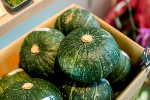 野菜のかぼちゃ